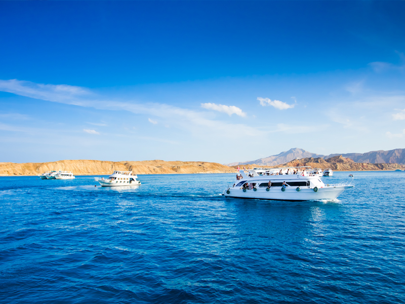 Diving Tour En Sharm El Sheikh Egypt