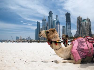 Dubai la princesa