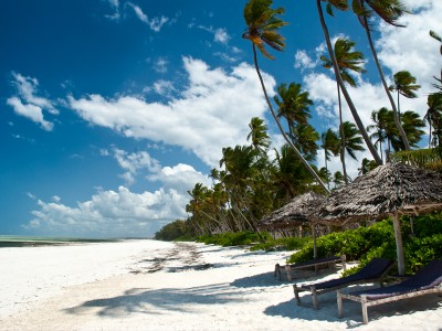 Fantastic  Zanzibar