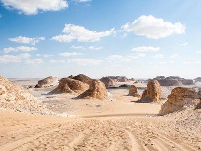 Photographic Safari Tour In Egypt